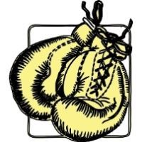 """Visit Boxing """"AOB"""" Renewal"""