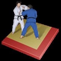 Lezione di gruppo di Karate